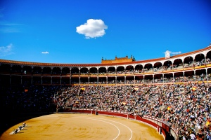 Madrid's Bullfighting Stadium