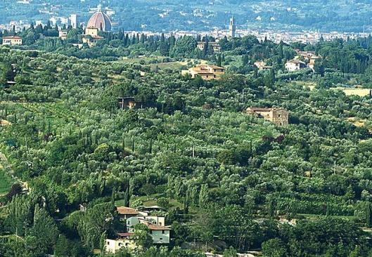 Italy's Tuscany